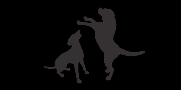 Icon - Dog Behaviour