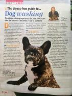 Stress Free Guide to Dog Washing - 1of2